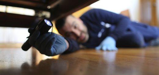 Programas de control de plagas Barcelona en hostelería y restauración